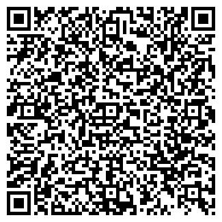 QR-код с контактной информацией организации АЛЕМ МОТОРС