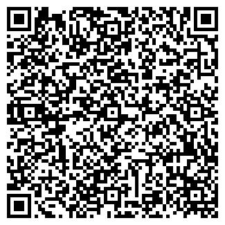 QR-код с контактной информацией организации DimEl company