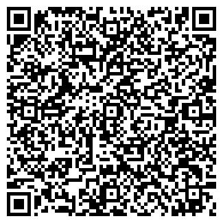 QR-код с контактной информацией организации ДОМ СКАЗКИ