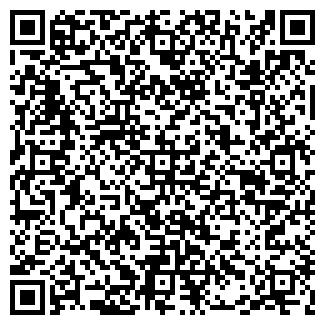 QR-код с контактной информацией организации Совместное предприятие Ryterna