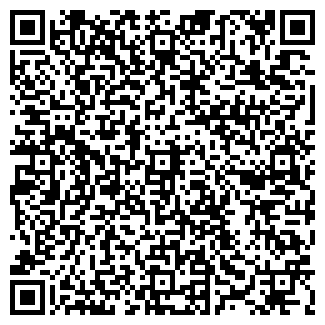 """QR-код с контактной информацией организации ИП """"DM"""""""