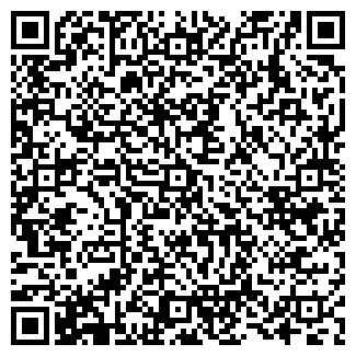 QR-код с контактной информацией организации Big (Биг), ТОО
