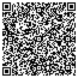 QR-код с контактной информацией организации Шабыт, ИП