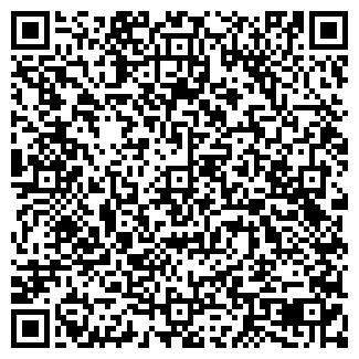 QR-код с контактной информацией организации ИП ПАНИНИ П.В.