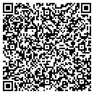 QR-код с контактной информацией организации Раисов, ИП