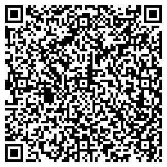 QR-код с контактной информацией организации OLD WALL, ИП