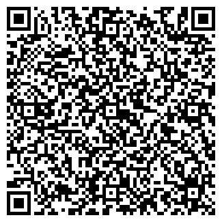 QR-код с контактной информацией организации ИП Ремонт дорог