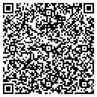 """QR-код с контактной информацией организации ТОО """"BLUSPARK"""""""