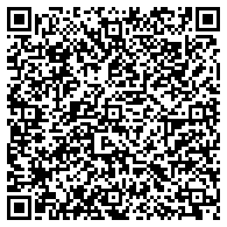 QR-код с контактной информацией организации ООО Светлана