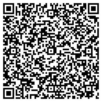 QR-код с контактной информацией организации ШЕФФЛЕР КГ