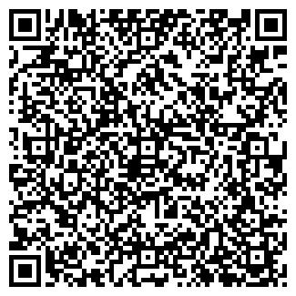 QR-код с контактной информацией организации Brandz.kz, ИП