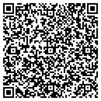 QR-код с контактной информацией организации ИП Кизина Д.А.