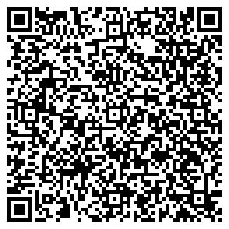 QR-код с контактной информацией организации ИП Метельский В.А.