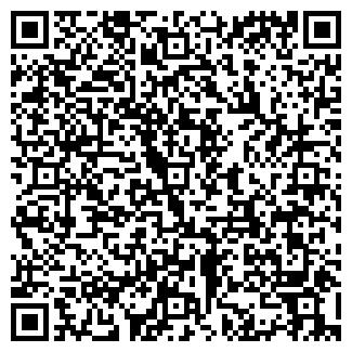 QR-код с контактной информацией организации ИП Elfa Pavlodar