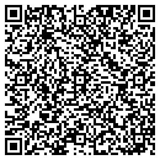 QR-код с контактной информацией организации 100btc.pro