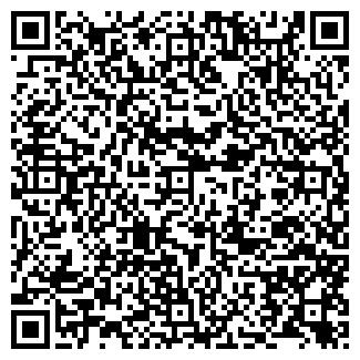 QR-код с контактной информацией организации Cheback Pub