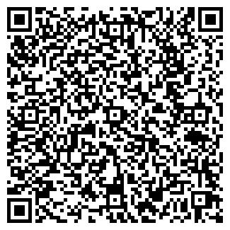 QR-код с контактной информацией организации ИП Данис