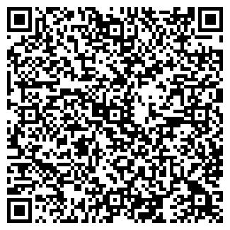 QR-код с контактной информацией организации СТО Молния-Элит