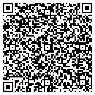 QR-код с контактной информацией организации ИП Codix