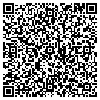 QR-код с контактной информацией организации СТАТИСТИКА