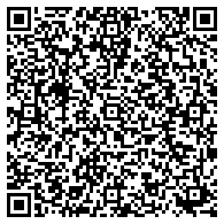 QR-код с контактной информацией организации ИП TYNDYK.KG