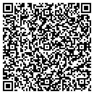 QR-код с контактной информацией организации ООО НОВЫЙ МИР
