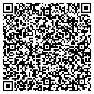 QR-код с контактной информацией организации ООО БЛИЦ