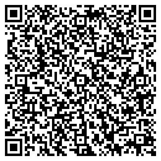 QR-код с контактной информацией организации ИП iSolo