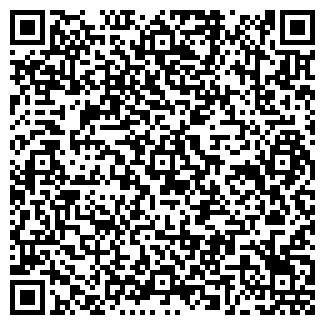 QR-код с контактной информацией организации DVS