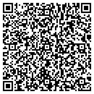 QR-код с контактной информацией организации ООО На Бис