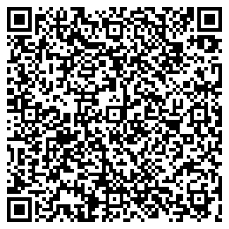 QR-код с контактной информацией организации ИП Alatau In
