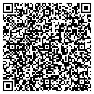 QR-код с контактной информацией организации ВОРОНИН С.А., ЧП