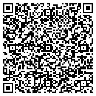 """QR-код с контактной информацией организации ООО """"Константа"""""""