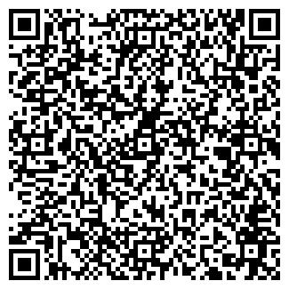 QR-код с контактной информацией организации ООО Garage