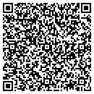 QR-код с контактной информацией организации ДВМ ГРУПП