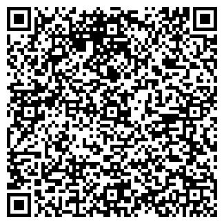QR-код с контактной информацией организации ИП ИЛЬИНА В.В.