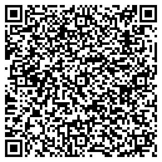 QR-код с контактной информацией организации ООО СТОЛИЦА