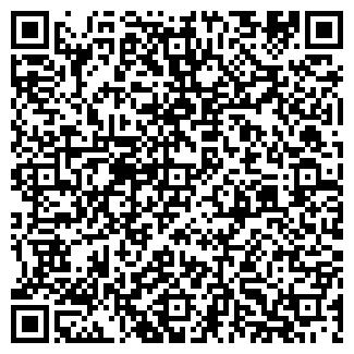 QR-код с контактной информацией организации ООО Династия Лимитед