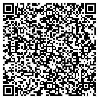 QR-код с контактной информацией организации ИП Mizam