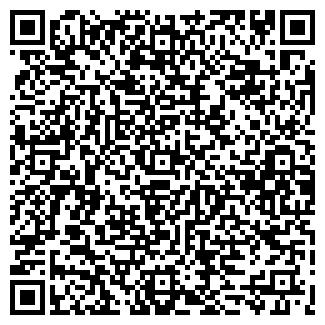 QR-код с контактной информацией организации МОЛНИЯ