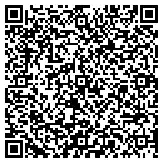 QR-код с контактной информацией организации NSITE