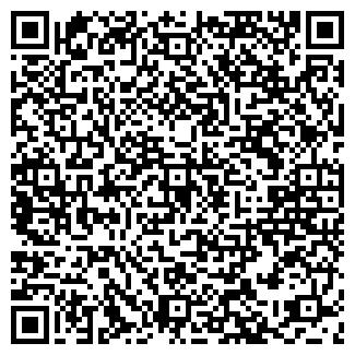 QR-код с контактной информацией организации БАГРИС-СЕРВИС