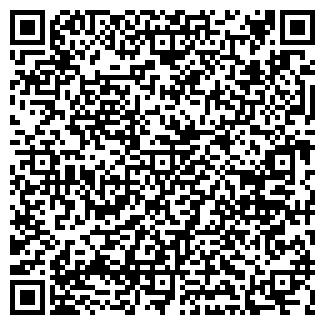 QR-код с контактной информацией организации KineSio
