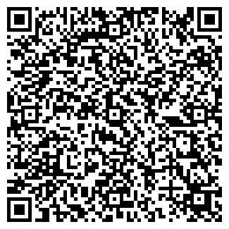 QR-код с контактной информацией организации ИНСЭТ