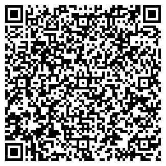 QR-код с контактной информацией организации ДИПОЛЬ ЭЛЕКТРУМ