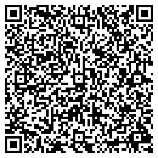 QR-код с контактной информацией организации ООО ВИСЛА