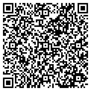 QR-код с контактной информацией организации КОТ И КО