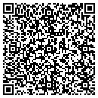 QR-код с контактной информацией организации ALEX VIZ
