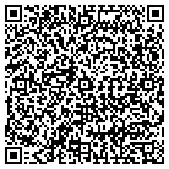 QR-код с контактной информацией организации СТЕЛС ИП АЛЕКСЕЕВА