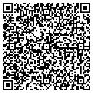 QR-код с контактной информацией организации БАШКИРНЕФТЕПРОДУКТ ОАО № 33